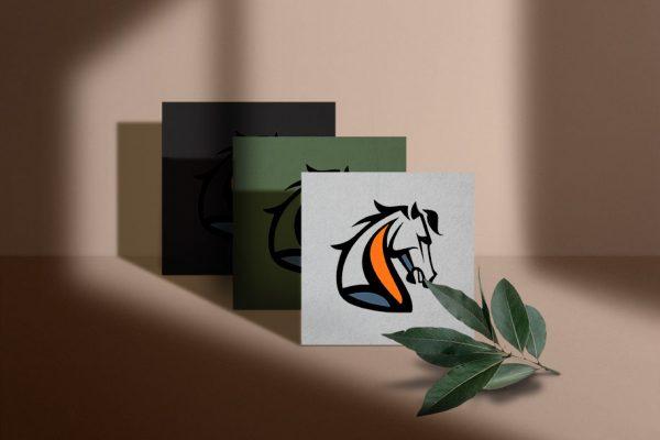 kny-Logo