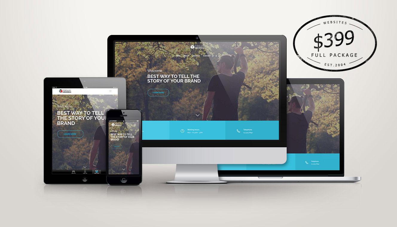 $399 Full Web Design Package